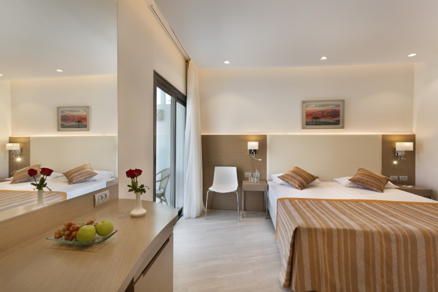 Room accessible to the disabled with a view of the mountains - dead sea spa hotel room